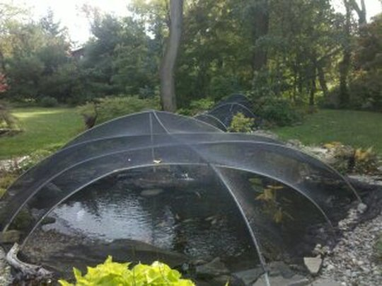 Pond & Water Feature Cleaning contractors